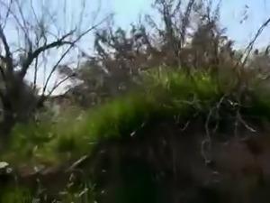 Wifey's World - Outdoor blowjob