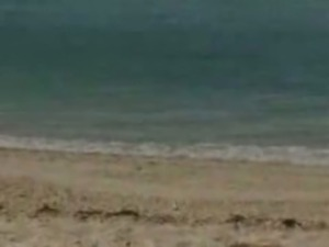 4 Perfect Beach Bums