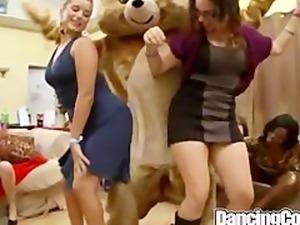 Dancingcock Bear Cock Dancing Show
