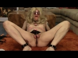 Pussyboy's Cum Eating Sissy Tribute For Mistress Donna