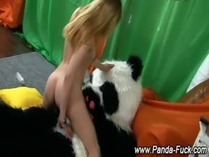 Fetish toy panda amateur teen free