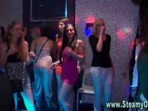 Real amateur party girls greedily sucking on stripper cocks