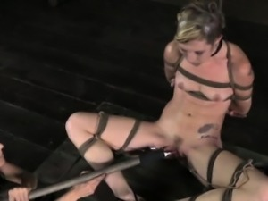 Box tied skank learns discipline