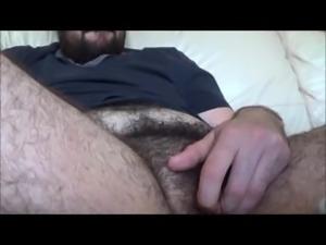 hot transbear